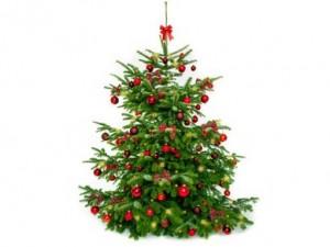 betriebsweihnachtsfeier-Koethen